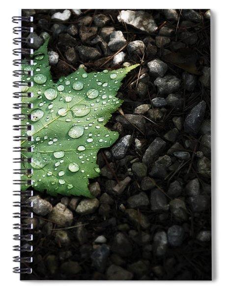 Dew On Leaf Spiral Notebook