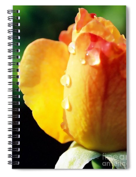 Dew On Rose Spiral Notebook