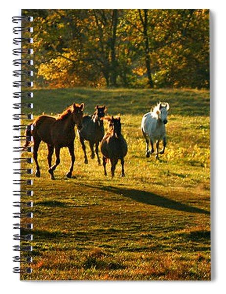 Dinner Bell Spiral Notebook
