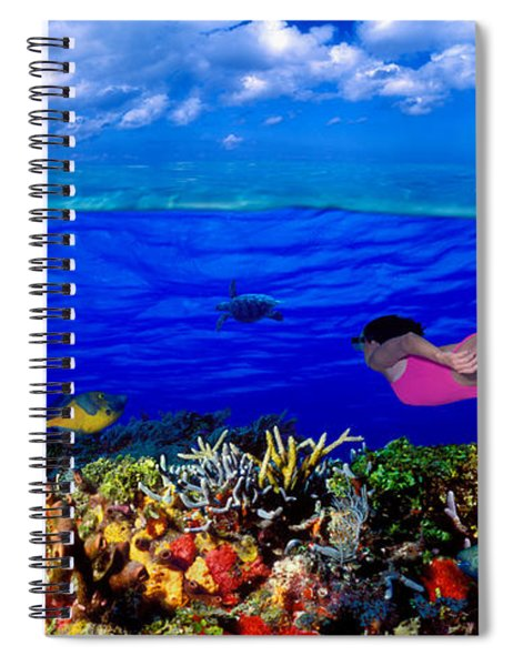 Diver Along Reef With Parrotfish, Green Spiral Notebook