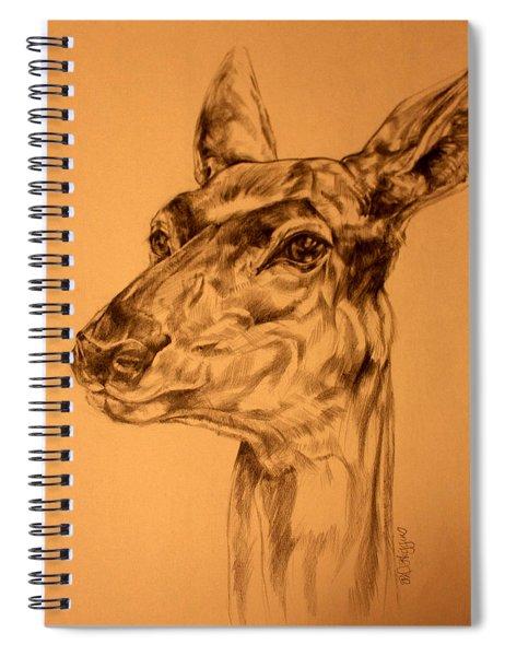 Doe Sketch Spiral Notebook