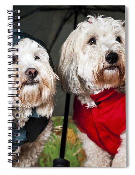 Dogs Under Umbrella Spiral Notebook