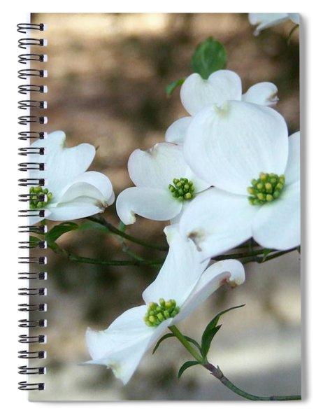 Dogwood 2 Spiral Notebook