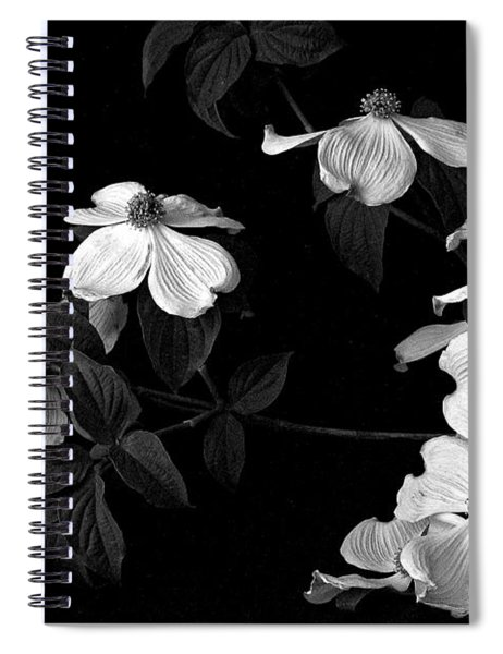 Dogwood Spiral Notebook