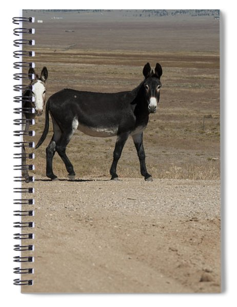 Donkey Family Spiral Notebook