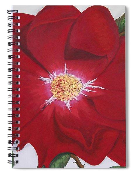 Dortmund Climber Rose Spiral Notebook