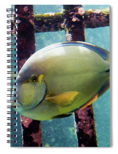 Down At The Shipwreck Spiral Notebook