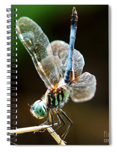 Dragonfly Headstand Spiral Notebook