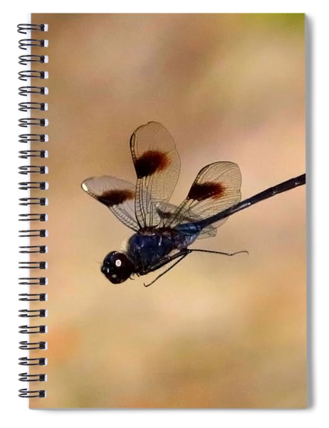 Dragonfly In Flight With Tan Background  Spiral Notebook