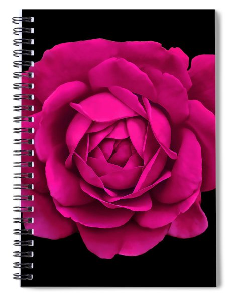 Dramatic Hot Pink Rose Portrait Spiral Notebook