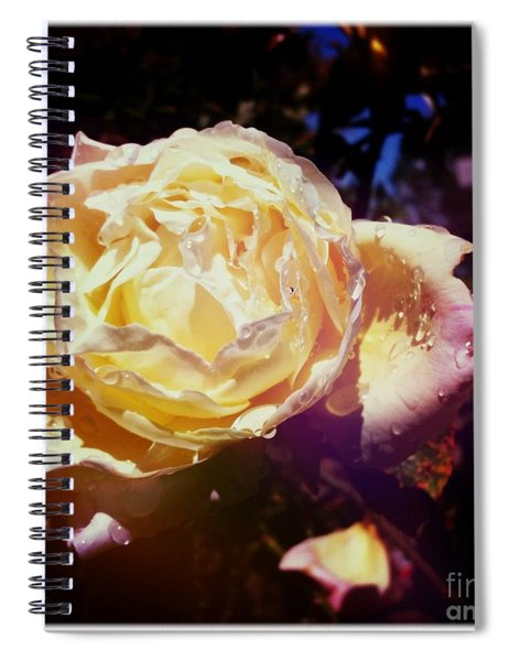 Dramatic Rose Spiral Notebook