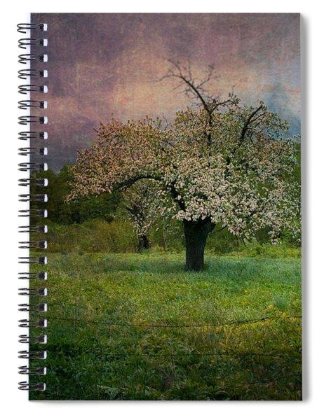 Dream Of Spring Spiral Notebook