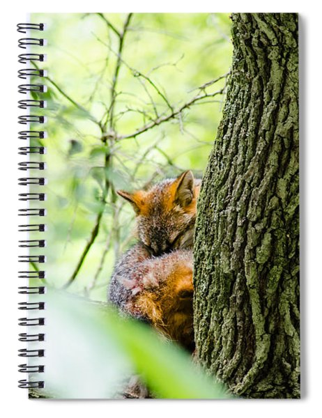 Dreaming Above All Spiral Notebook