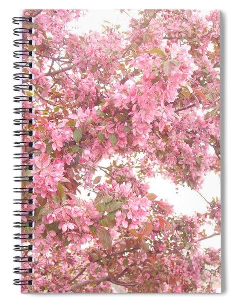 Dreamy Pink South Carolina Spring Apple Blossom Trees Spiral Notebook