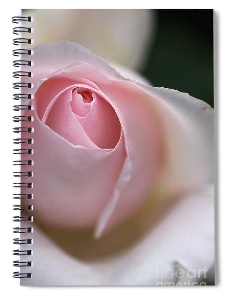Dreamy Rose Spiral Notebook