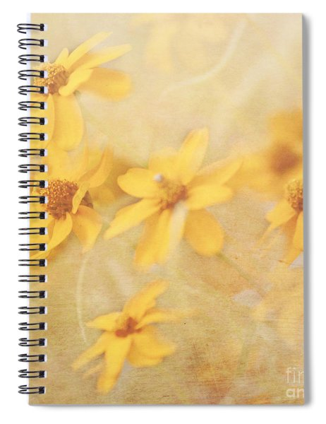 Dreamy Yellow Coreopsis Spiral Notebook