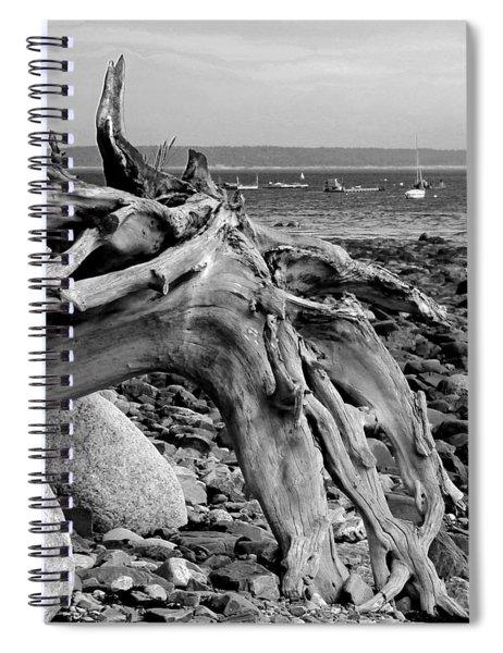 Driftwood On Rocky Beach Spiral Notebook