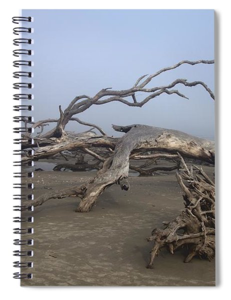 Driftwood Trees On Jekyll Island Spiral Notebook