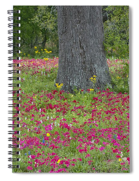 Drummonds Phlox And Crown Tickweed Central Texas Spiral Notebook