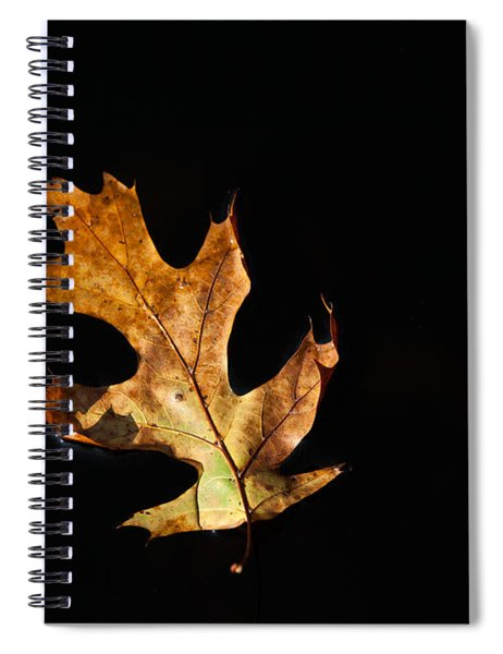 Dry On Water Spiral Notebook
