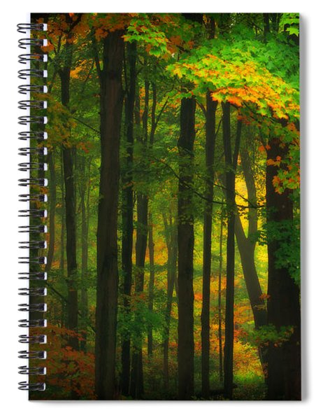 Early Fall 4 Spiral Notebook