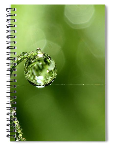 Early Morning Dew Spiral Notebook