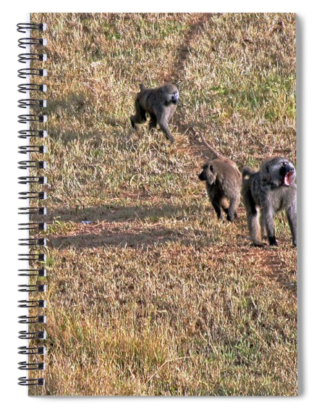 Early Morning Stroll Spiral Notebook