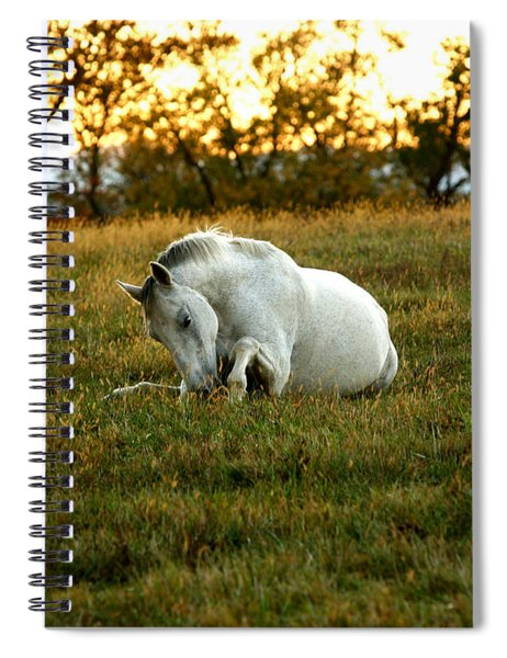 Easier Lying Down Spiral Notebook