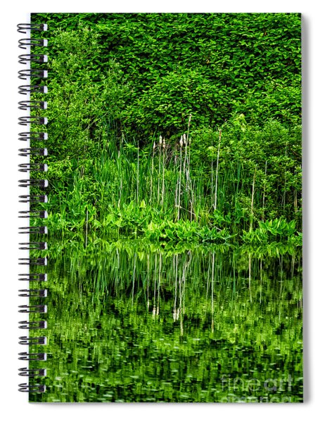 Eden 38 Oil Spiral Notebook