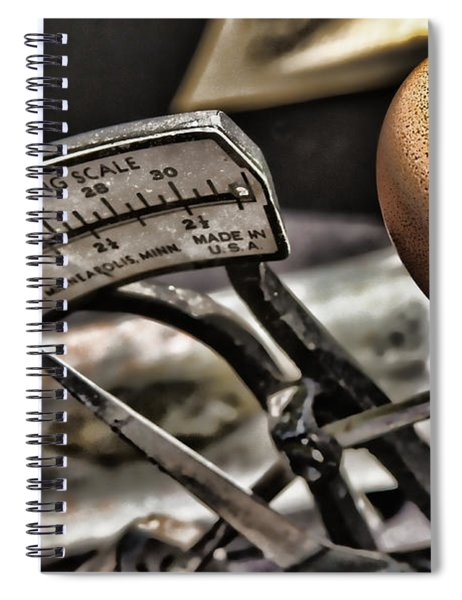 Eggcellent Spiral Notebook