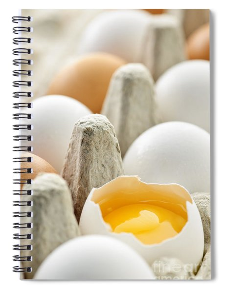 Eggs In Box Spiral Notebook