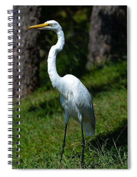 Egret - Full Length Spiral Notebook