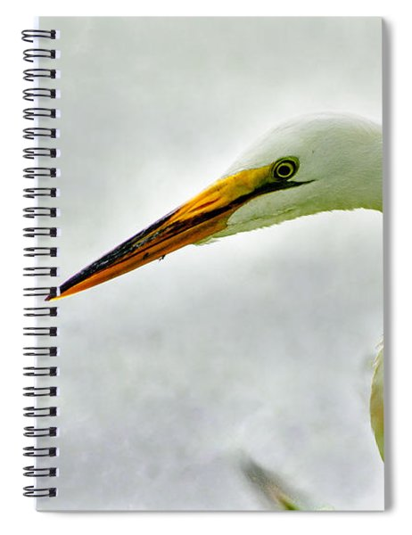 Egret Close-up Spiral Notebook