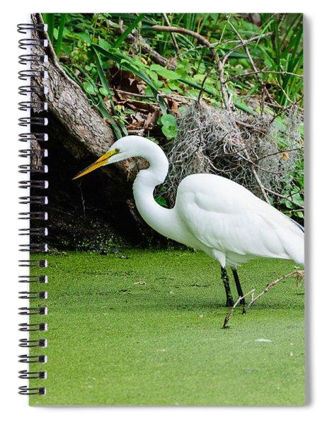 Egret Fishing Spiral Notebook