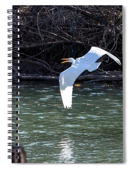 Egret In Flight Spiral Notebook