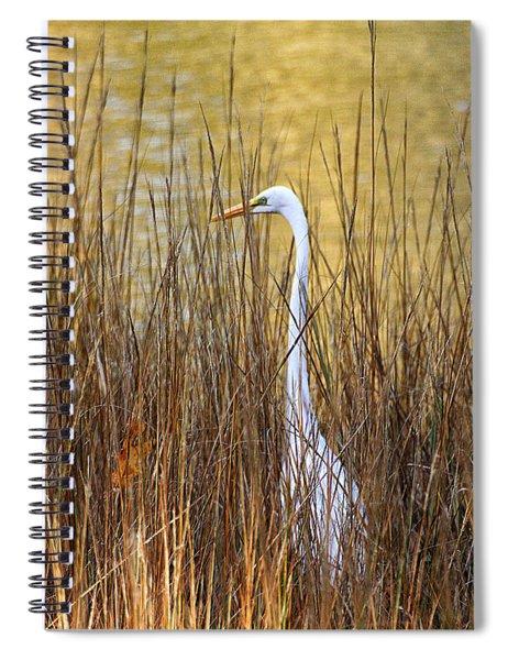 Egret In The Grass Spiral Notebook