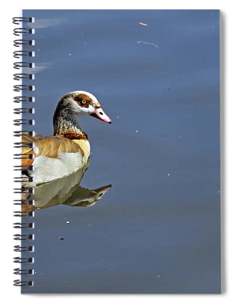 Egyptian Goose Spiral Notebook