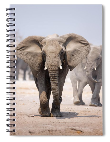 Elephant Bathing Spiral Notebook