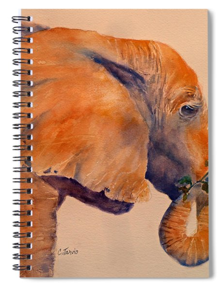 Elephant Eating Spiral Notebook