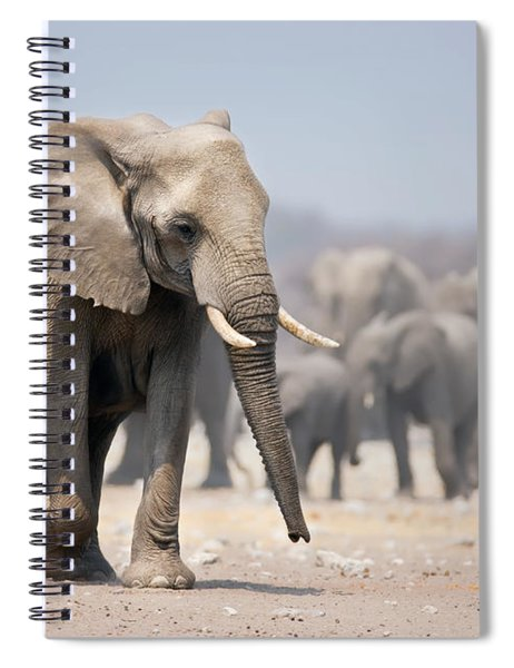 Elephant Feet Spiral Notebook