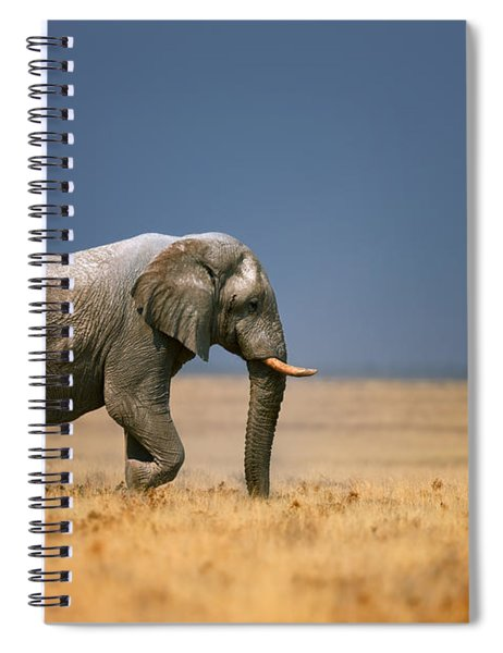 Elephant In Grassfield Spiral Notebook