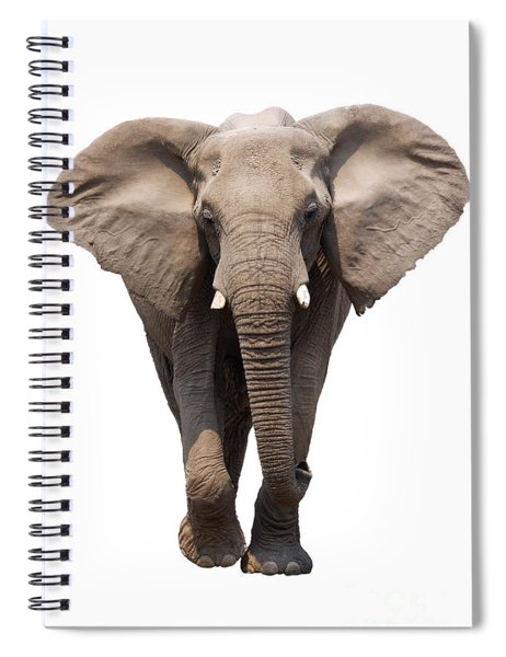 Elephant Isolated Spiral Notebook