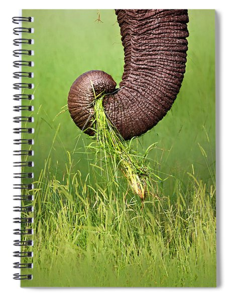 Elephant Trunk Pulling Grass Spiral Notebook