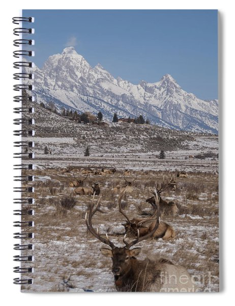 Elk And The Grand Tetons Spiral Notebook