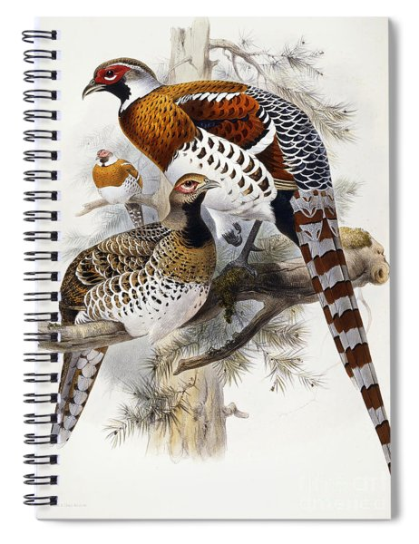 Elliot's Pheasant Spiral Notebook