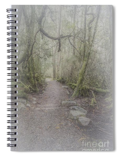 Enchanted Forest Spiral Notebook