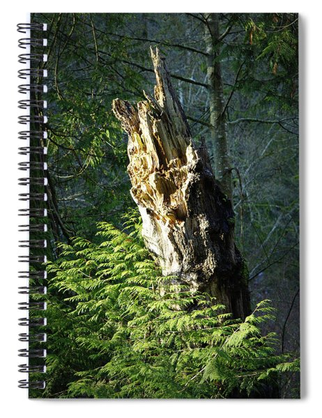Enchanted Woods Spiral Notebook