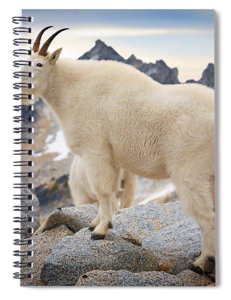 Enchantment Goat Spiral Notebook