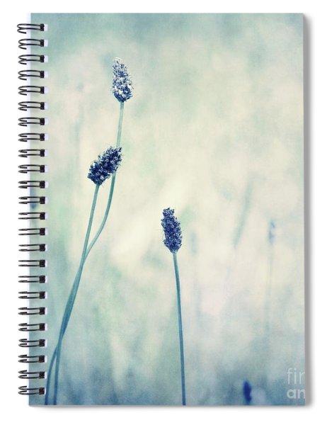 Endearing Spiral Notebook by Priska Wettstein