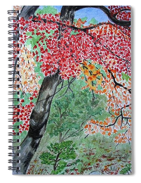 Enjoying Lost Maples Spiral Notebook
